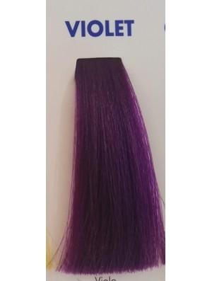 VIOLA CRAZY TONER 100 ML Bionic Inebrya Color - prodotti per parrucchieri - hairevolution prodotti